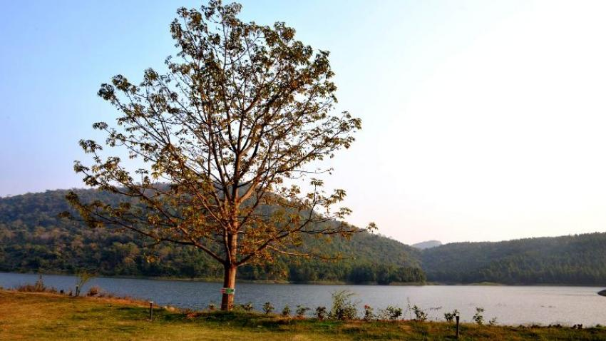 Khairabera Eco Adventure Resorts: Whispers of the Quaint Hills