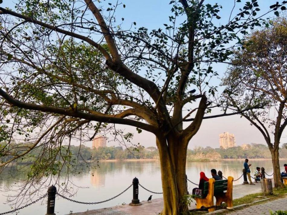 Images of the Day : Kolkata's green oasis on a winter evening