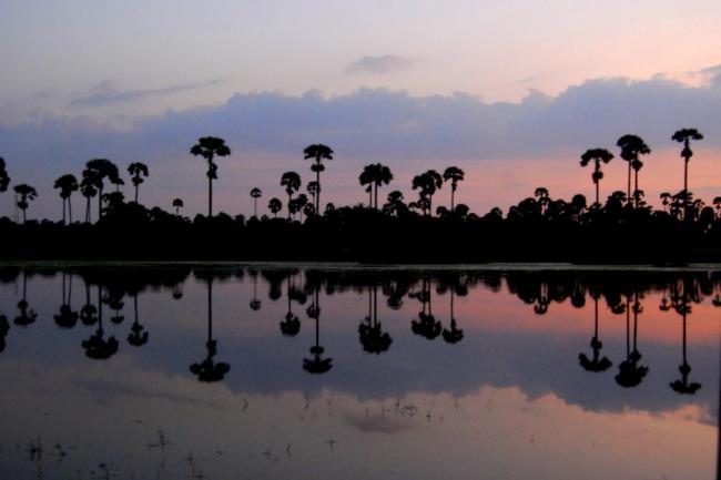 Lanka lore: Tiger trail Jaffna
