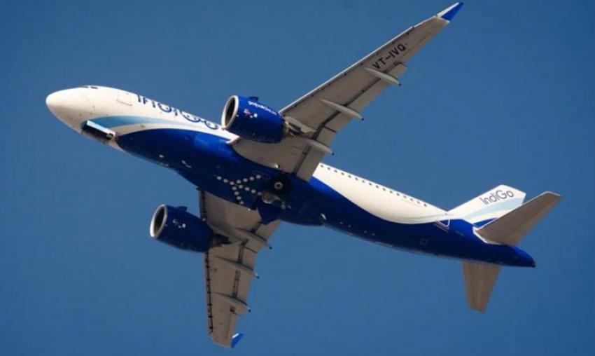 IndiGo transports over 50T in its CarGo flights to Singapore and Maldives