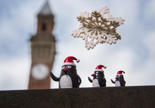 University of Birmingham academics creates festive family of penguins with 3D laser printers