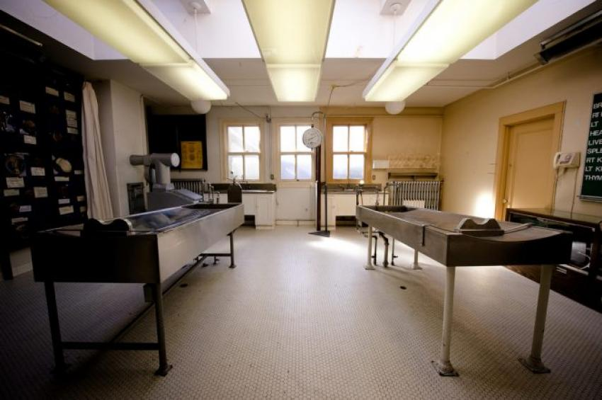 Watch a movie at a morgue in Vancouver