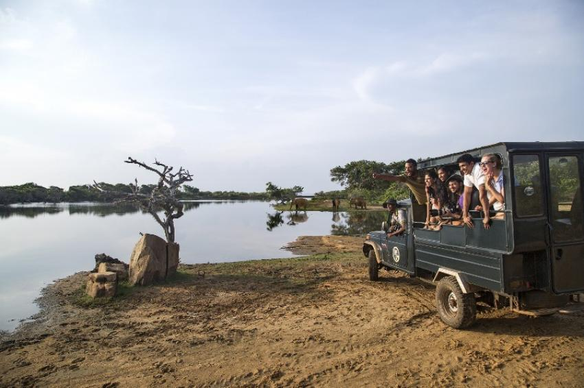 Experience the best of bush, beach and highlands with Cinnamon in Sri Lanka