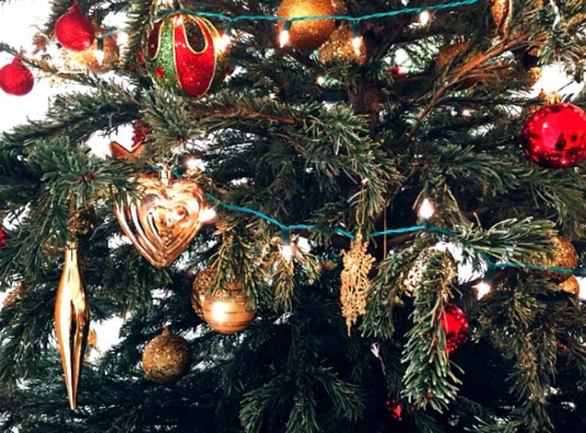 Eating out in Kolkata: Seven choices for Christmas and New Year