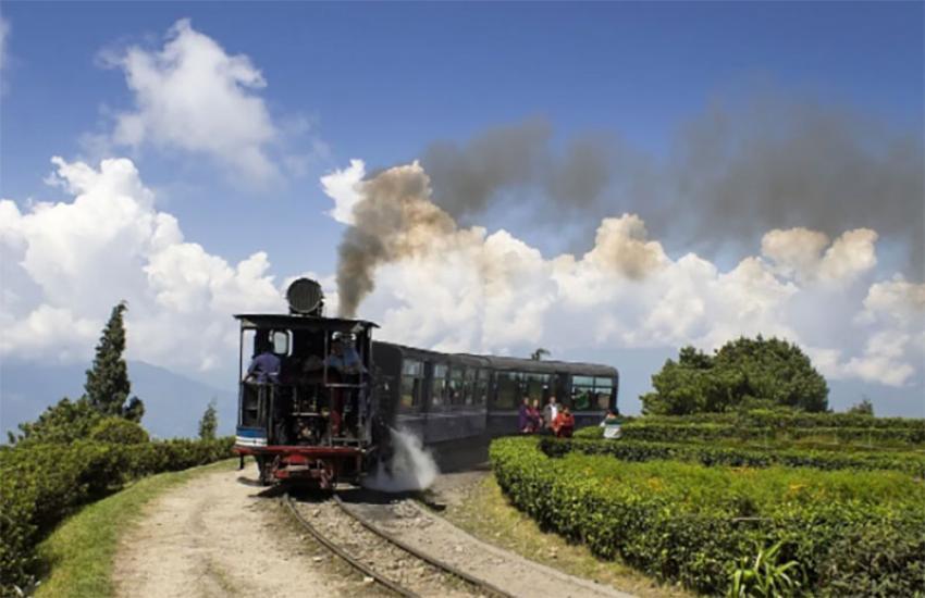 Enjoy Jungle Tea Toy-Train Safari on the world famous DHR