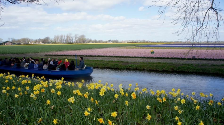 Keukenhof/Holland: World's best spring garden